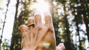 A hand held up to the sun image for Linda Salvin's post on prayer